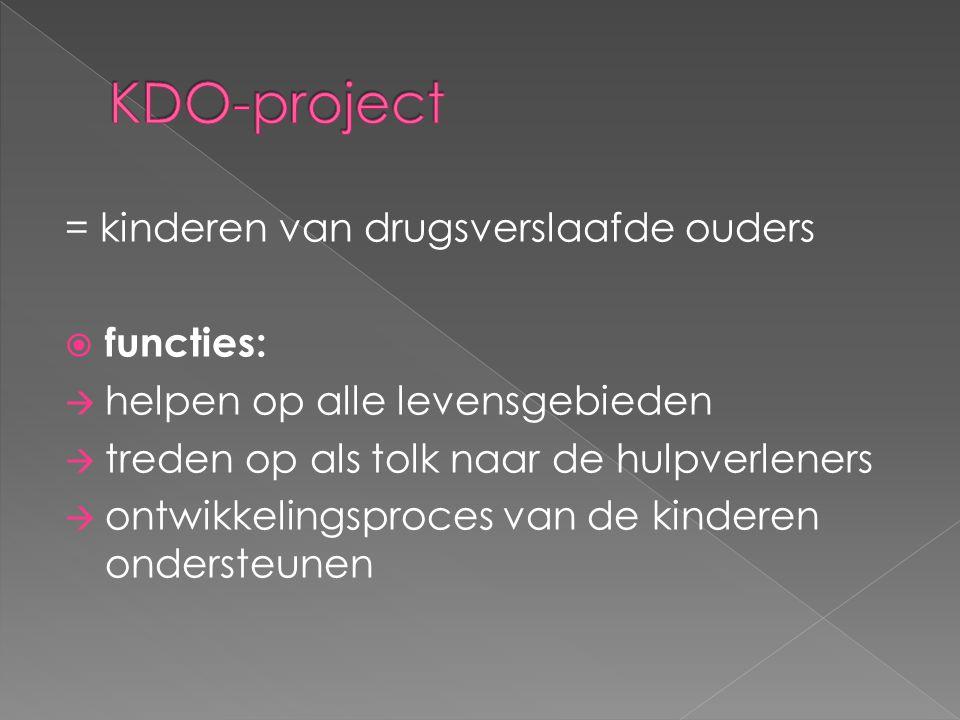 = kinderen van drugsverslaafde ouders  functies:  helpen op alle levensgebieden  treden op als tolk naar de hulpverleners  ontwikkelingsproces van de kinderen ondersteunen