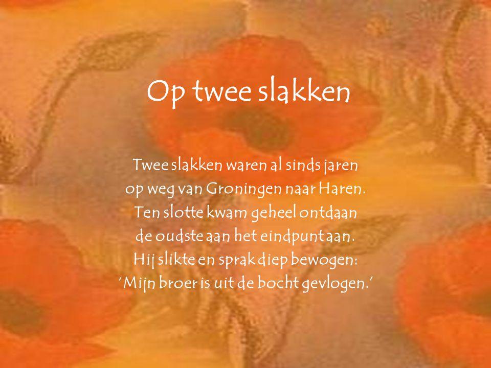 Op twee slakken Twee slakken waren al sinds jaren op weg van Groningen naar Haren. Ten slotte kwam geheel ontdaan de oudste aan het eindpunt aan. Hij