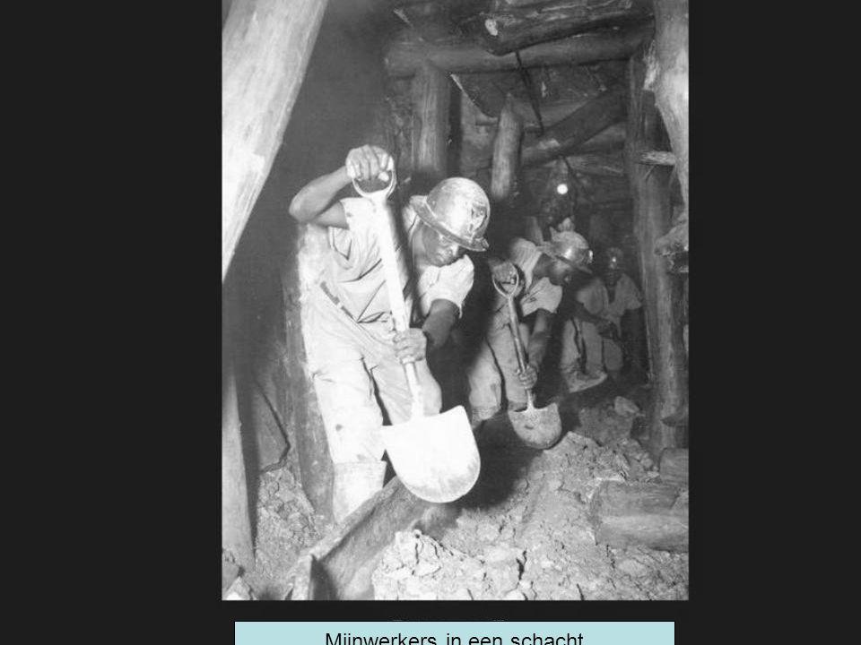 Mijnwerkers in een schacht