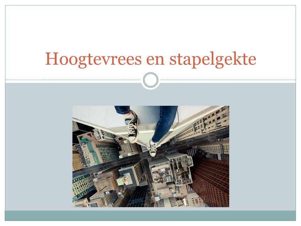 Sociale blokken Vervuiling Verloedering Vandalisme => armoede geconcentreerd onder 1 dak