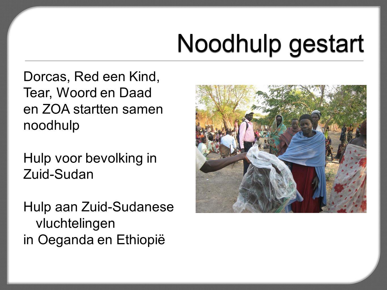 Mensen voorzien van water, latrines, waterpompen, voedsel en zaaigoed Helpen met onderkomens en onderwijs