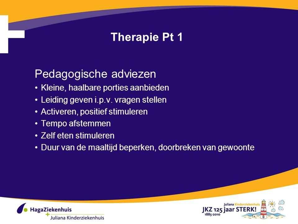 Therapie Pt 1 Pedagogische adviezen Kleine, haalbare porties aanbieden Leiding geven i.p.v.