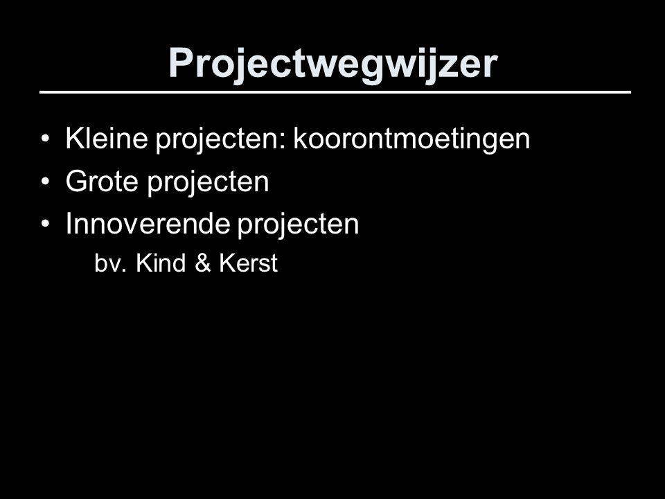 Projectwegwijzer Kleine projecten: koorontmoetingen Grote projecten Innoverende projecten bv.
