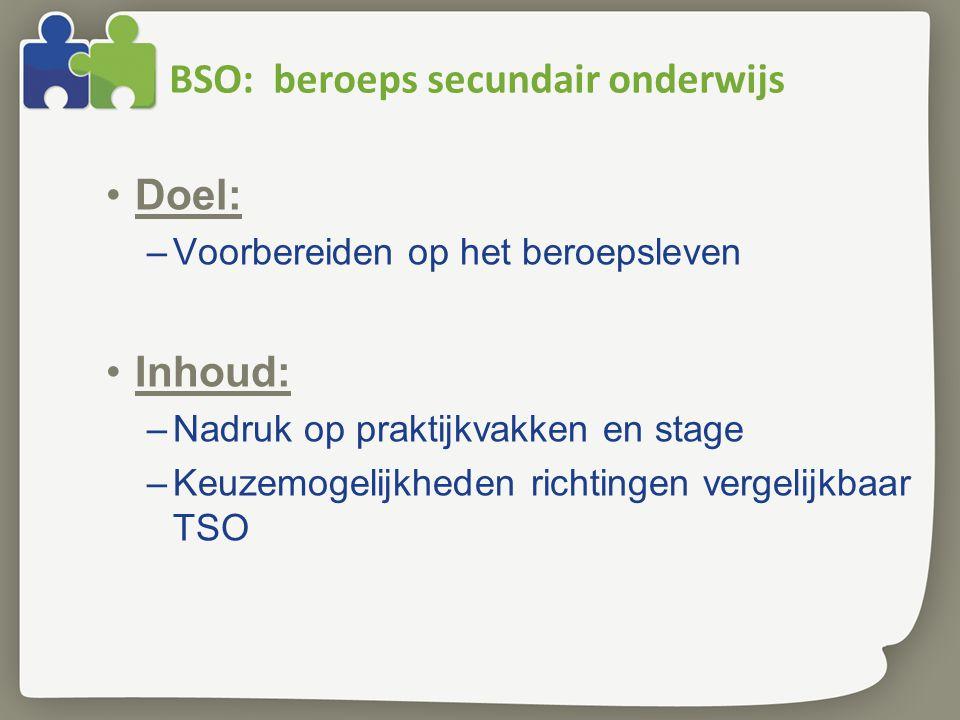 BSO: beroeps secundair onderwijs Doel: –Voorbereiden op het beroepsleven Inhoud: –Nadruk op praktijkvakken en stage –Keuzemogelijkheden richtingen vergelijkbaar TSO