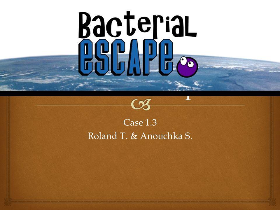 Case 1.3 Roland T. & Anouchka S.