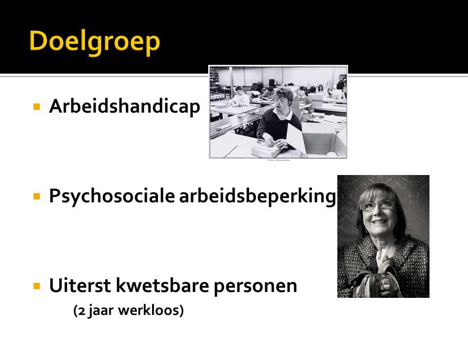  Arbeidshandicap  Psychosociale arbeidsbeperking MMPP  Uiterst kwetsbare personen (2 jaar werkloos)