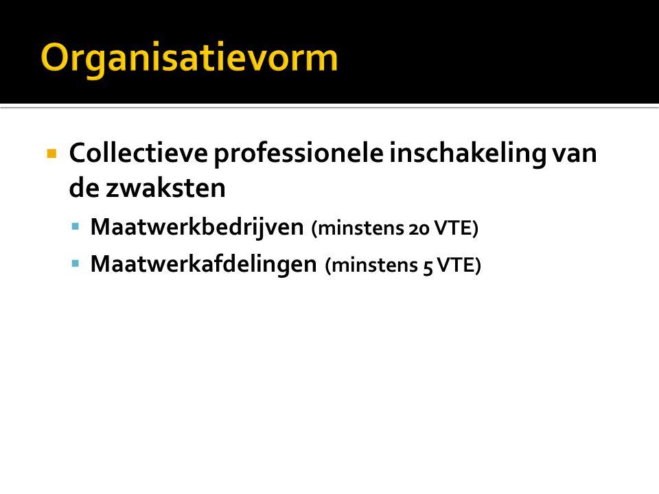  Collectieve professionele inschakeling van de zwaksten  Maatwerkbedrijven (minstens 20 VTE)  Maatwerkafdelingen (minstens 5 VTE)