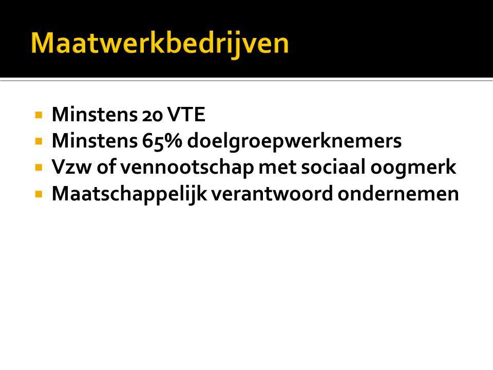  Minstens 20 VTE  Minstens 65% doelgroepwerknemers  Vzw of vennootschap met sociaal oogmerk  Maatschappelijk verantwoord ondernemen