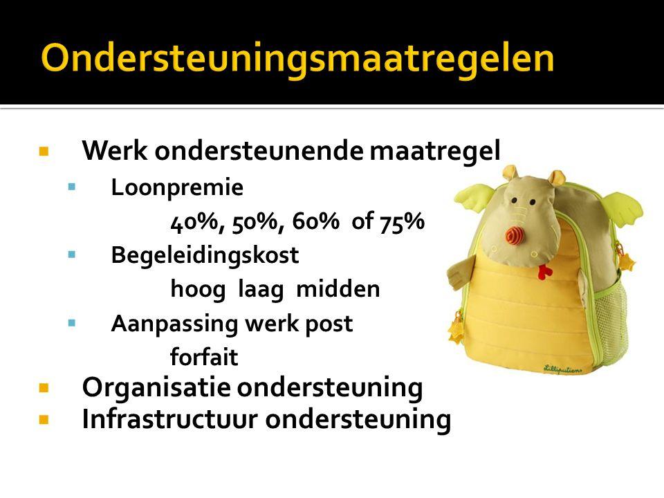  Werk ondersteunende maatregel  Loonpremie 40%, 50%, 60% of 75%  Begeleidingskost hoog laag midden  Aanpassing werk post forfait  Organisatie ondersteuning  Infrastructuur ondersteuning