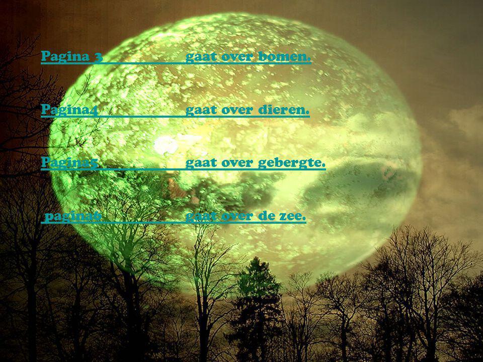 Onze presentatie gaat over de natuur Onze presentatie gaat over de natuur