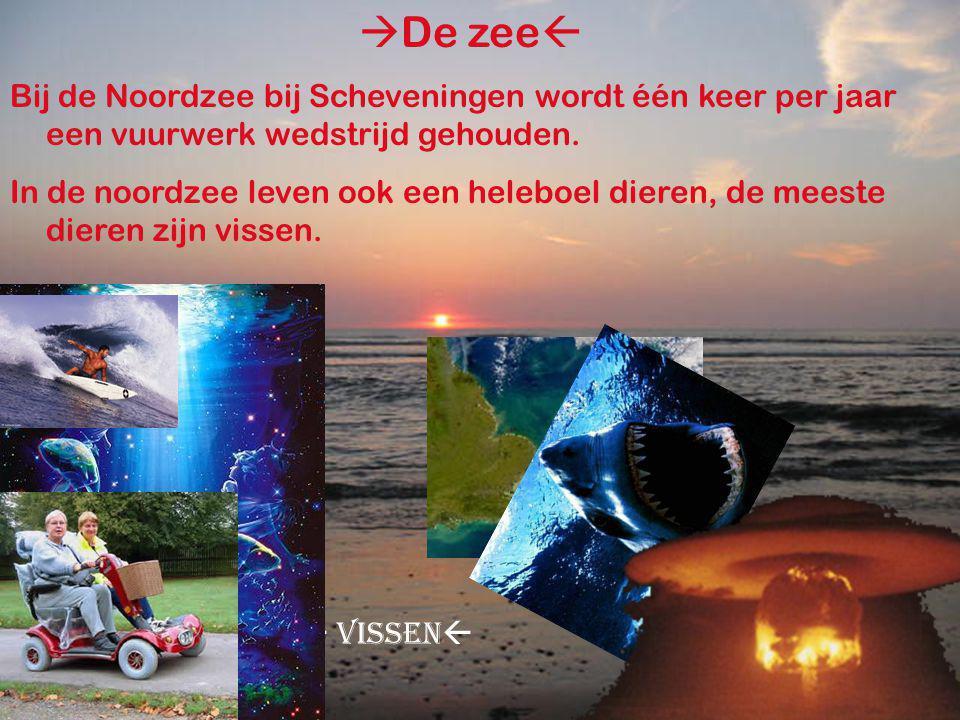 >De zee<  De zee  Bij de Noordzee bij Scheveningen wordt één keer per jaar een vuurwerk wedstrijd gehouden.