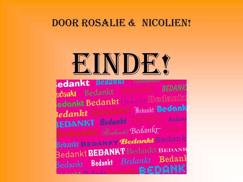 Door Rosalie & Nicolien! Einde!