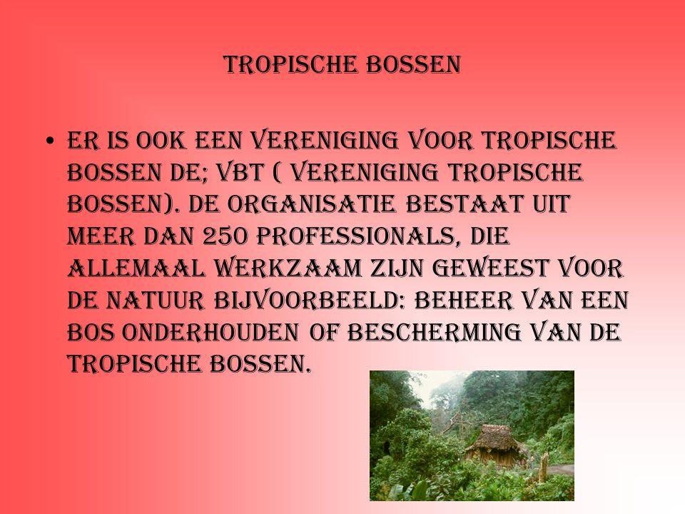 Tropische bossen Er is ook een vereniging voor tropische bossen de; VBT ( Vereniging tropische bossen). De organisatie bestaat uit meer dan 250 profes