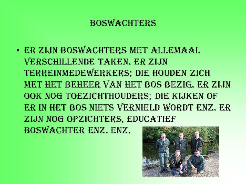 Boswachters Er zijn boswachters met allemaal verschillende taken. Er zijn terreinmedewerkers; die houden zich met het beheer van het bos bezig. Er zij