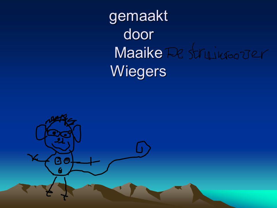 gemaakt door Maaike Wiegers