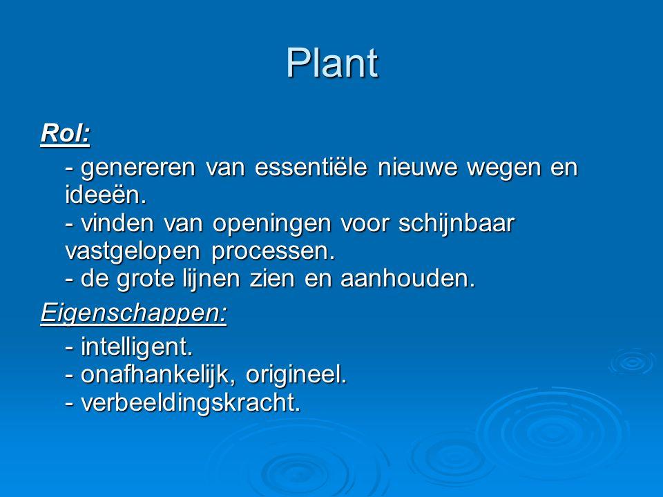 Plant Rol: - genereren van essentiële nieuwe wegen en ideeën. - vinden van openingen voor schijnbaar vastgelopen processen. - de grote lijnen zien en