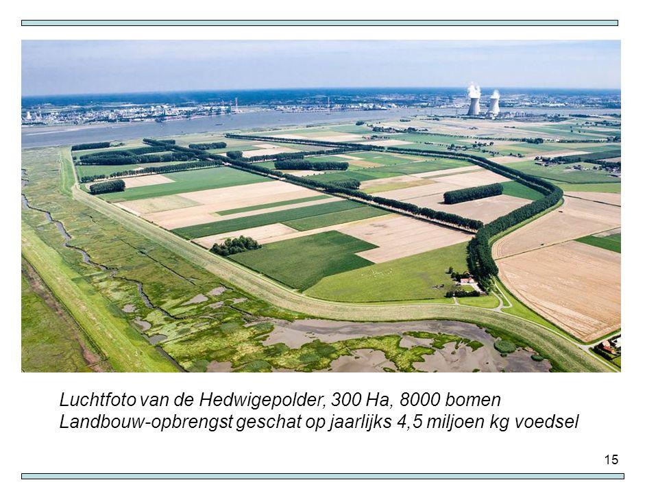 15 Luchtfoto van de Hedwigepolder, 300 Ha, 8000 bomen Landbouw-opbrengst geschat op jaarlijks 4,5 miljoen kg voedsel