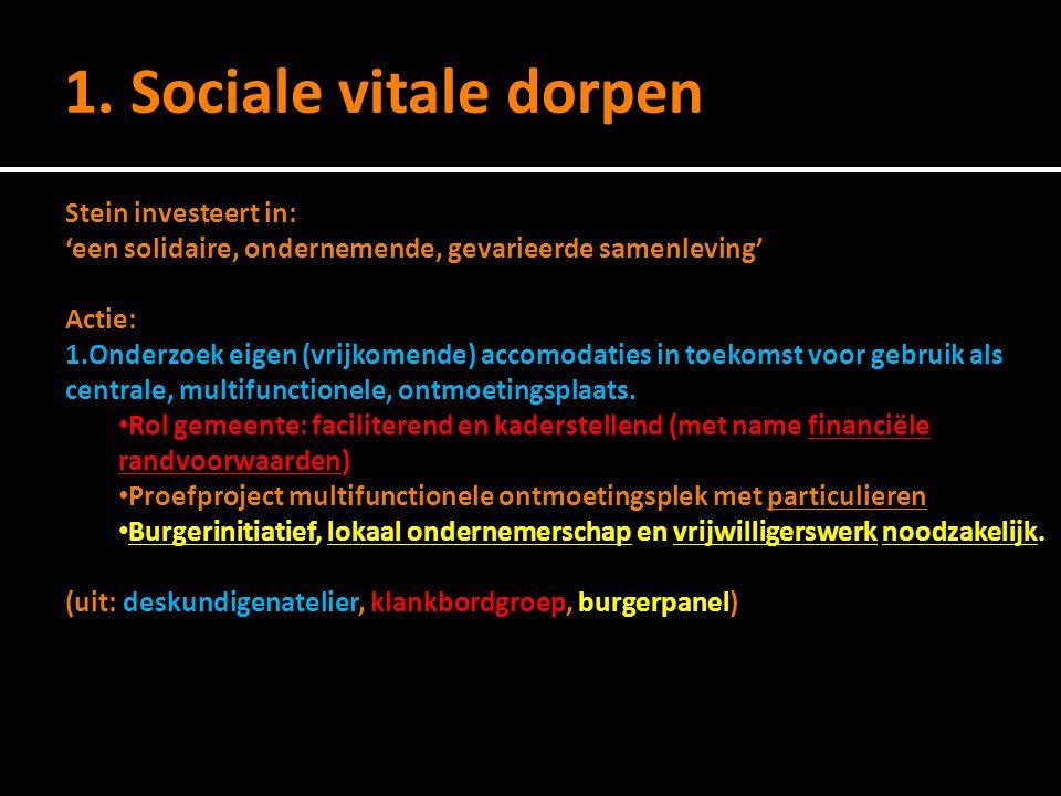 1. Sociale vitale dorpen Stein investeert in: 'een solidaire, ondernemende, gevarieerde samenleving' Actie: 1.Onderzoek eigen (vrijkomende) accomodati