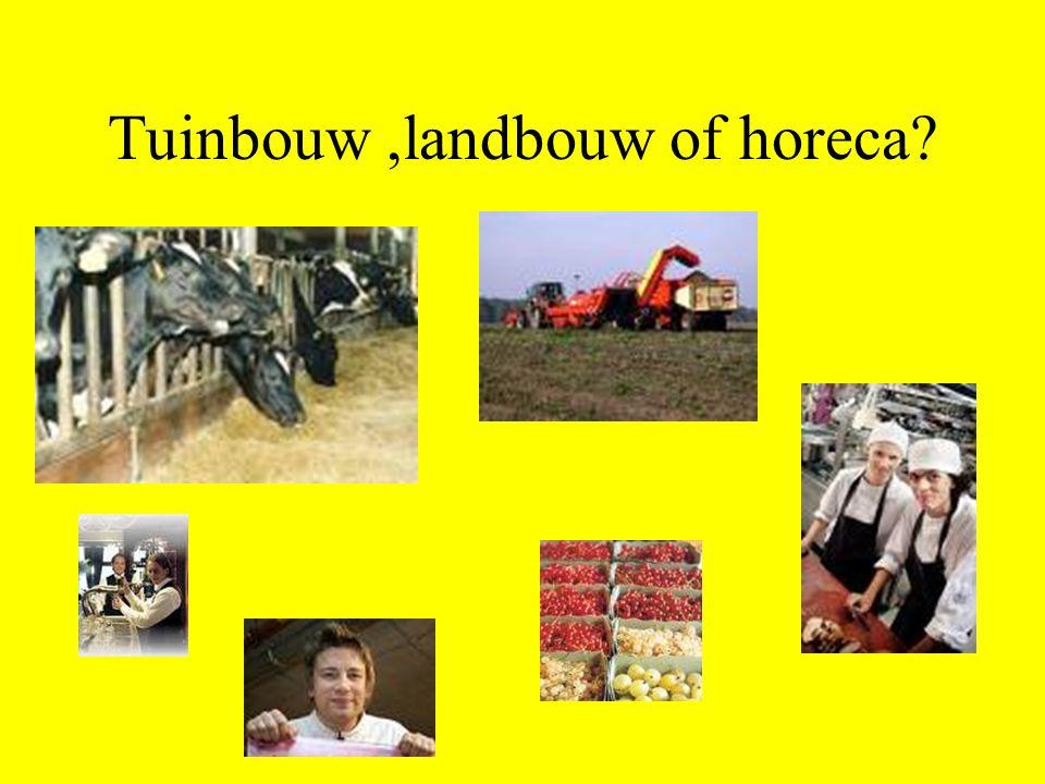 Tuinbouw,landbouw of horeca?