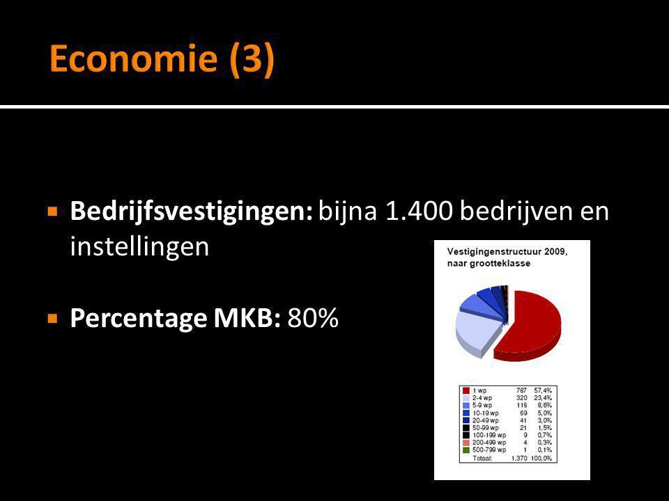  Bedrijfsvestigingen: bijna 1.400 bedrijven en instellingen  Percentage MKB: 80%