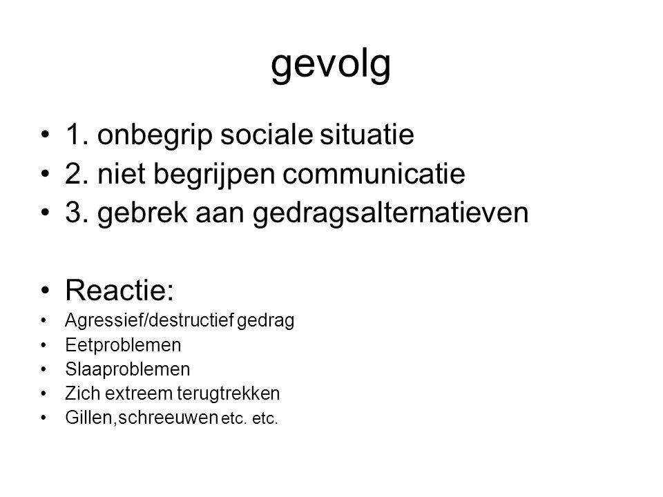 gevolg 1.onbegrip sociale situatie 2. niet begrijpen communicatie 3.
