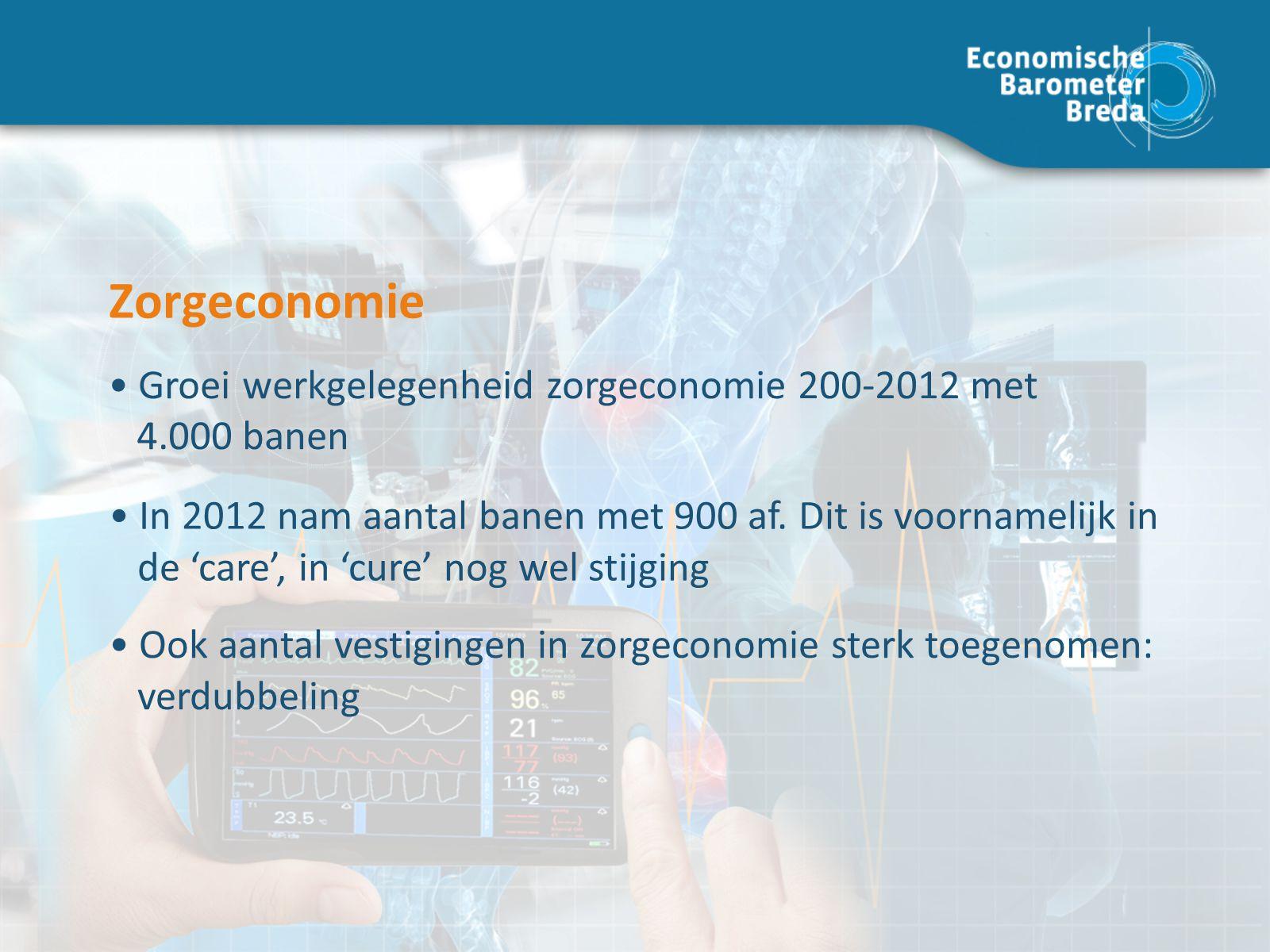 Zorgeconomie In 2012 nam aantal banen met 900 af.