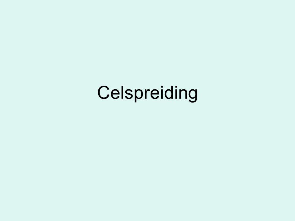 Celspreiding