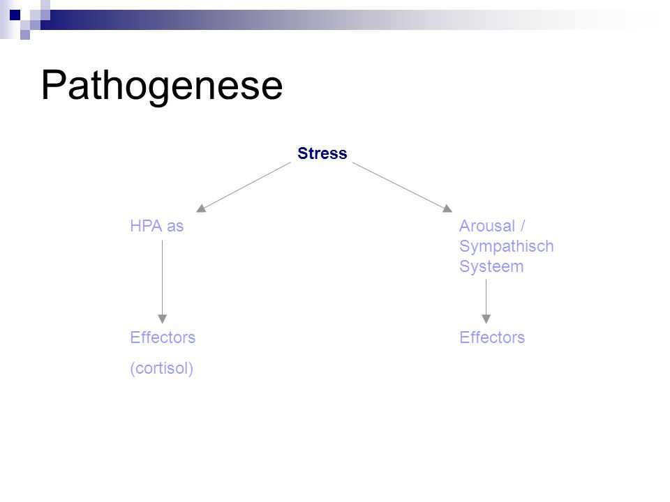 Pathogenese Arousal / Sympathisch Systeem Effectors Stress HPA as Effectors (cortisol)
