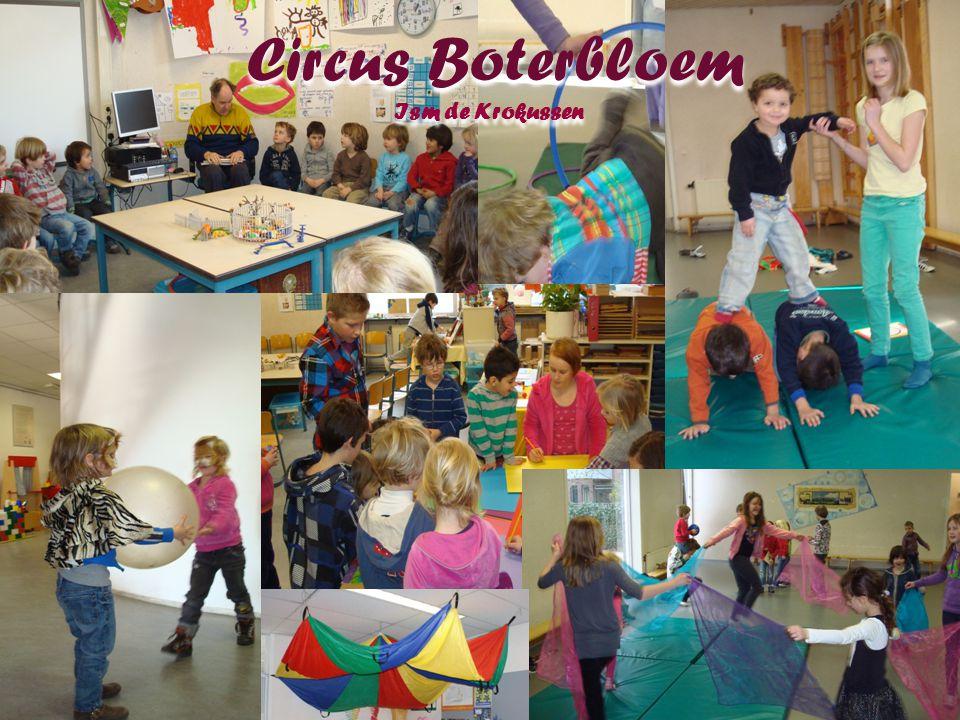 Circus Boterbloem Ism de Krokussen Circus Boterbloem Ism de Krokussen