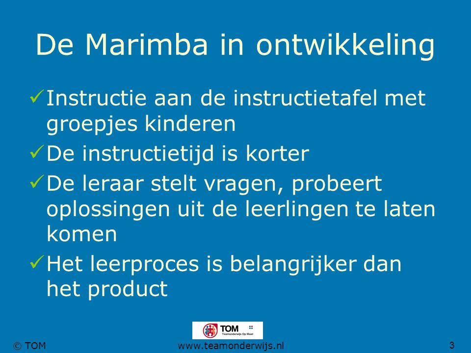 3 © TOMwww.teamonderwijs.nl De Marimba in ontwikkeling Instructie aan de instructietafel met groepjes kinderen De instructietijd is korter De leraar s