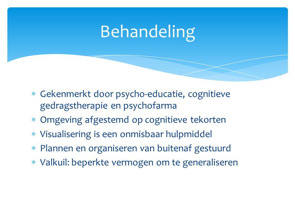  Gekenmerkt door psycho-educatie, cognitieve gedragstherapie en psychofarma  Omgeving afgestemd op cognitieve tekorten  Visualisering is een onmisbaar hulpmiddel  Plannen en organiseren van buitenaf gestuurd  Valkuil: beperkte vermogen om te generaliseren Behandeling