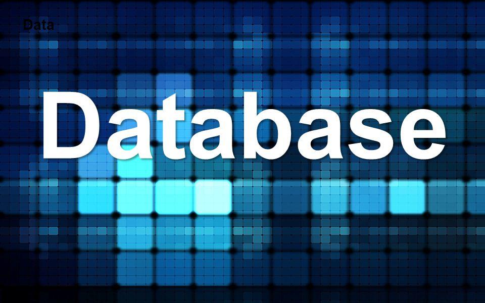 Data Database