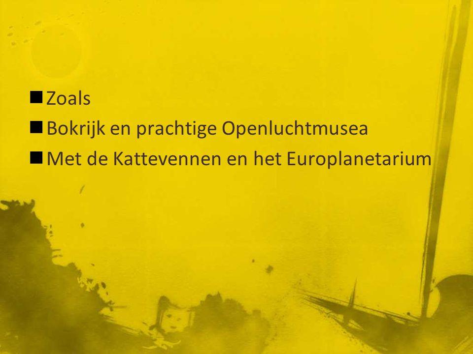 Zoals Bokrijk en prachtige Openluchtmusea Met de Kattevennen en het Europlanetarium