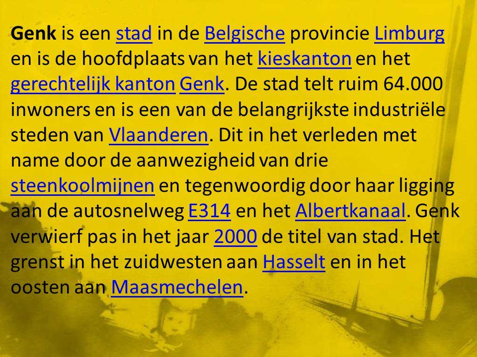 Genk is een stad in de Belgische provincie Limburg en is de hoofdplaats van het kieskanton en het gerechtelijk kanton Genk.