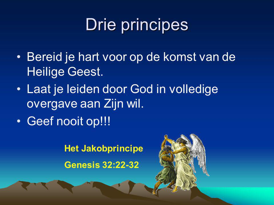 Drie principes Bereid je hart voor op de komst van de Heilige Geest. Laat je leiden door God in volledige overgave aan Zijn wil. Geef nooit op!!! Het