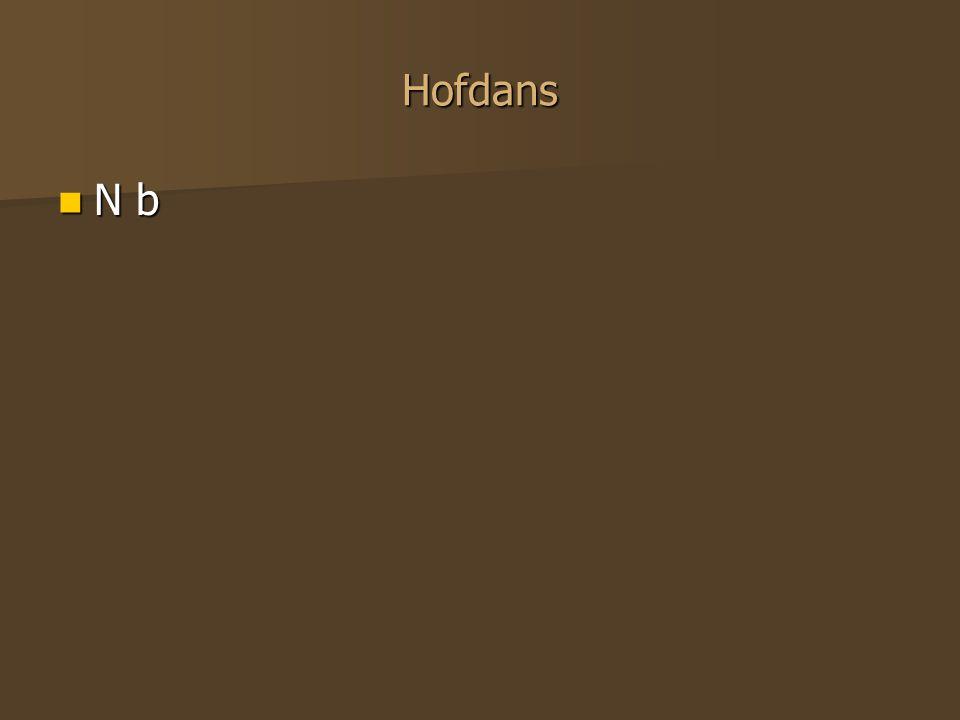 Hofdans N b N b