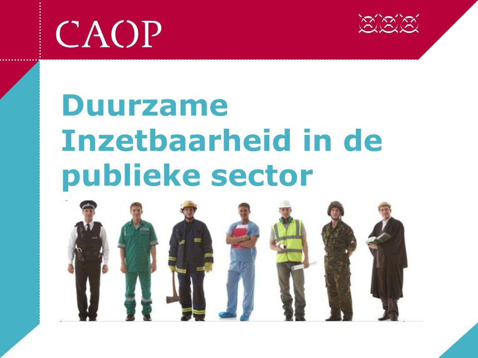 Duurzame Inzetbaarheid in de publieke sector