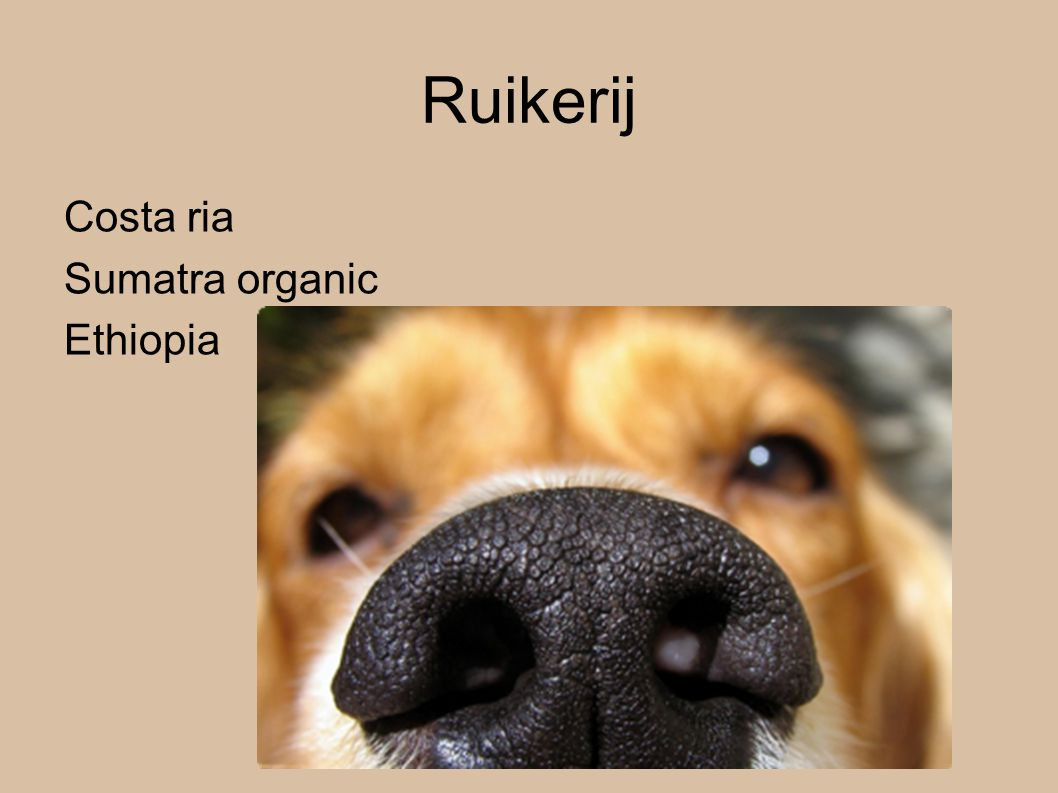 Ruikerij Costa ria Sumatra organic Ethiopia