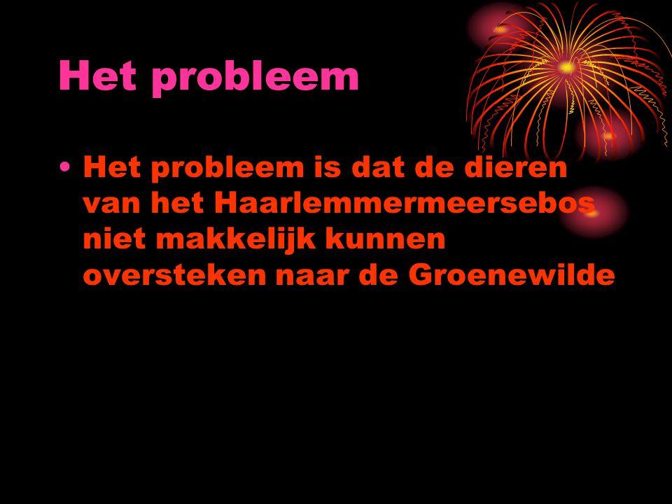 Het probleem Het probleem is dat de dieren van het Haarlemmermeersebos niet makkelijk kunnen oversteken naar de Groenewilde