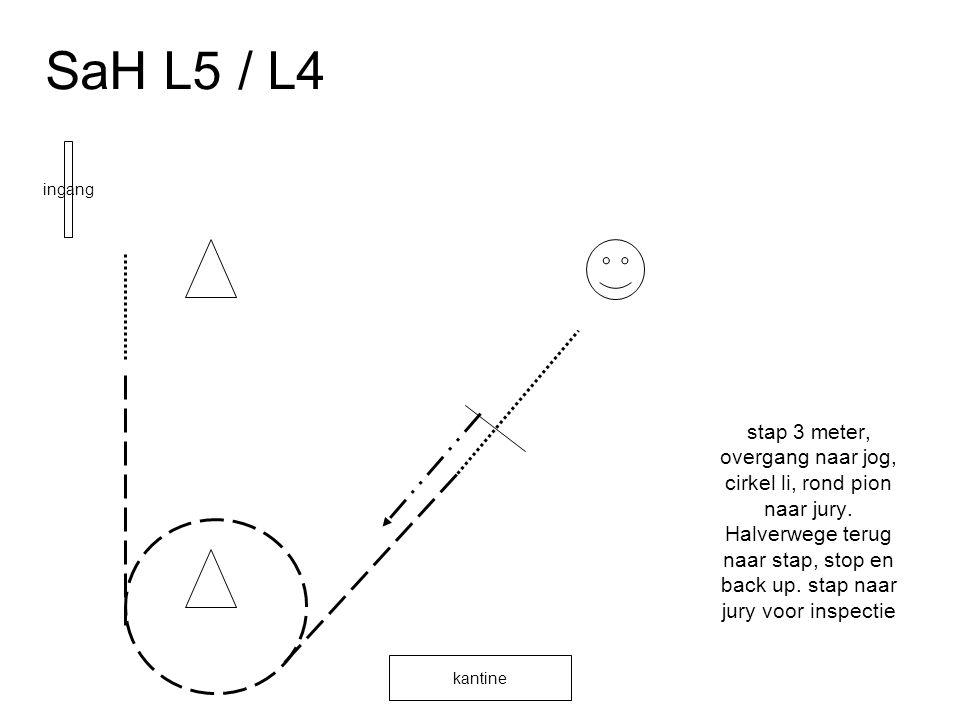 SaH L5 / L4 stap 3 meter, overgang naar jog, cirkel li, rond pion naar jury.