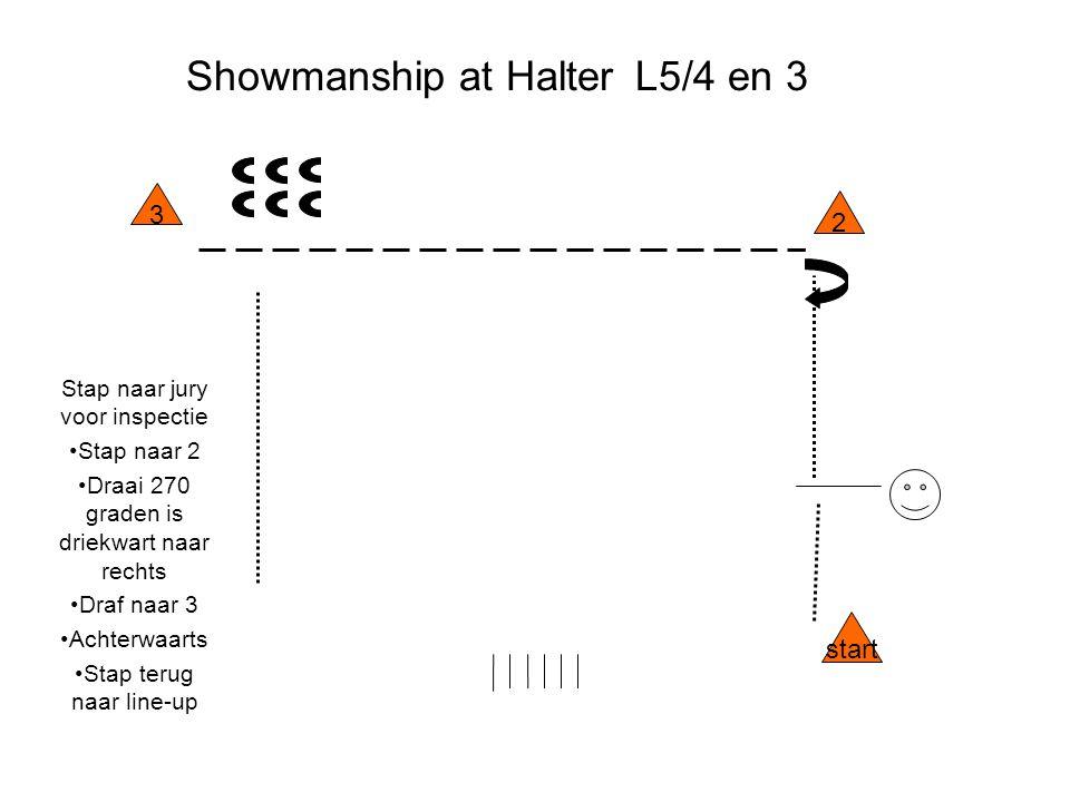 Showmanship at Halter L5/4 en 3 Stap naar jury voor inspectie Stap naar 2 Draai 270 graden is driekwart naar rechts Draf naar 3 Achterwaarts Stap teru