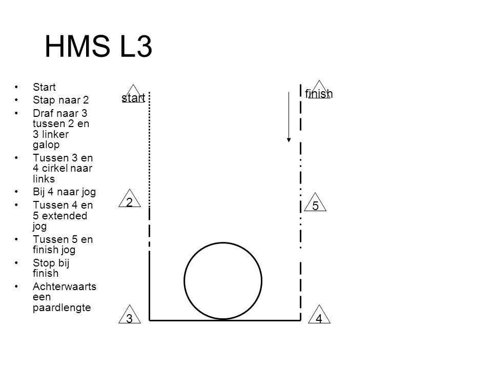 HMS L3 Start Stap naar 2 Draf naar 3 tussen 2 en 3 linker galop Tussen 3 en 4 cirkel naar links Bij 4 naar jog Tussen 4 en 5 extended jog Tussen 5 en finish jog Stop bij finish Achterwaarts een paardlengte start 2 finish 43 5