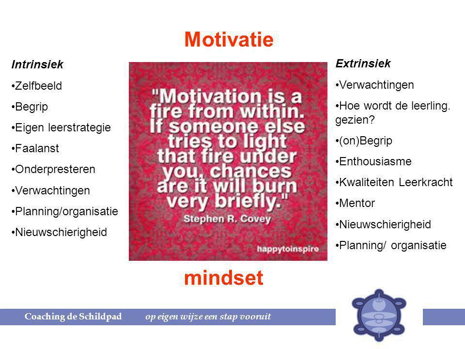 Motivatie Intrinsiek Zelfbeeld Begrip Eigen leerstrategie Faalanst Onderpresteren Verwachtingen Planning/organisatie Nieuwschierigheid Extrinsiek Verwachtingen Hoe wordt de leerling.