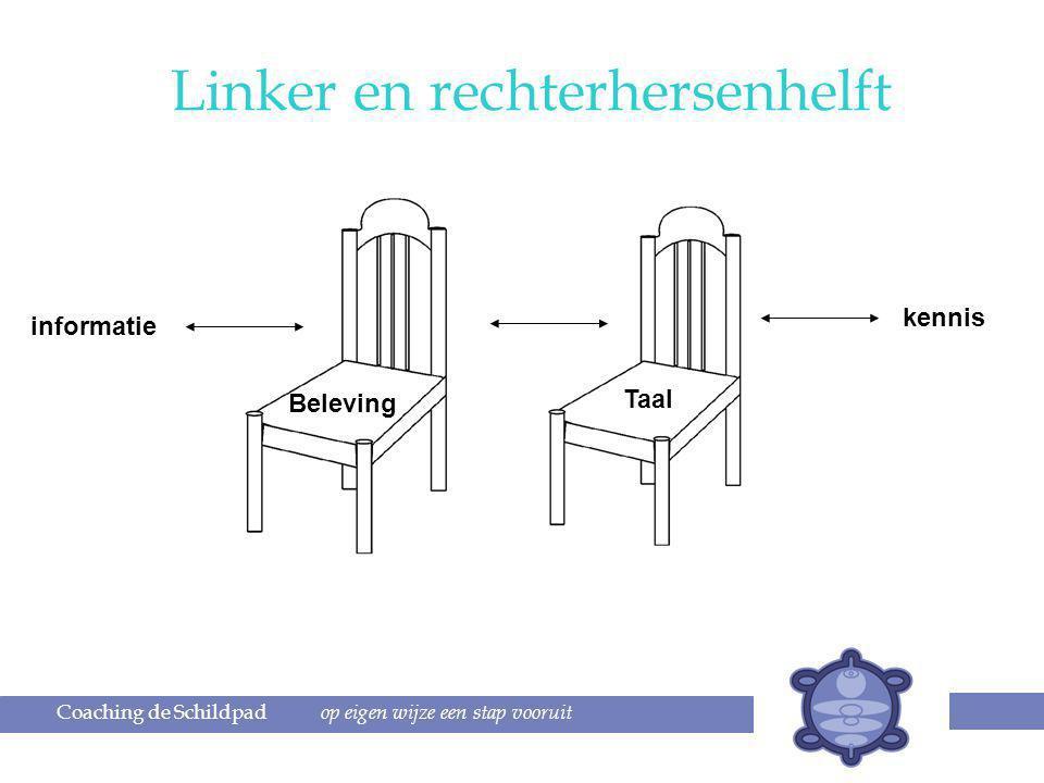 Coaching de Schildpad op eigen wijze een stap vooruit informatie kennis Beleving Taal Linker en rechterhersenhelft