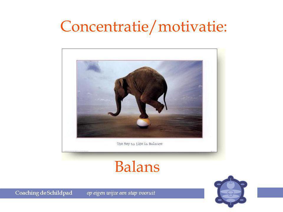 Coaching de Schildpad op eigen wijze een stap vooruit Concentratie/motivatie: Balans
