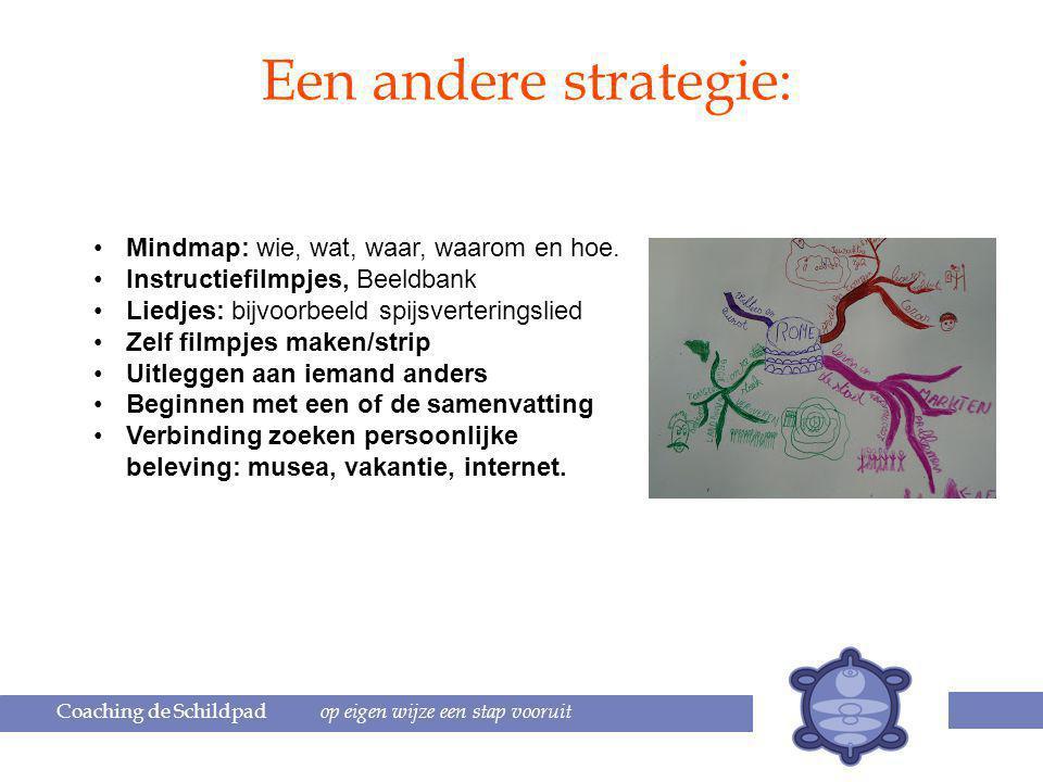 Coaching de Schildpad op eigen wijze een stap vooruit Een andere strategie: Mindmap: wie, wat, waar, waarom en hoe.