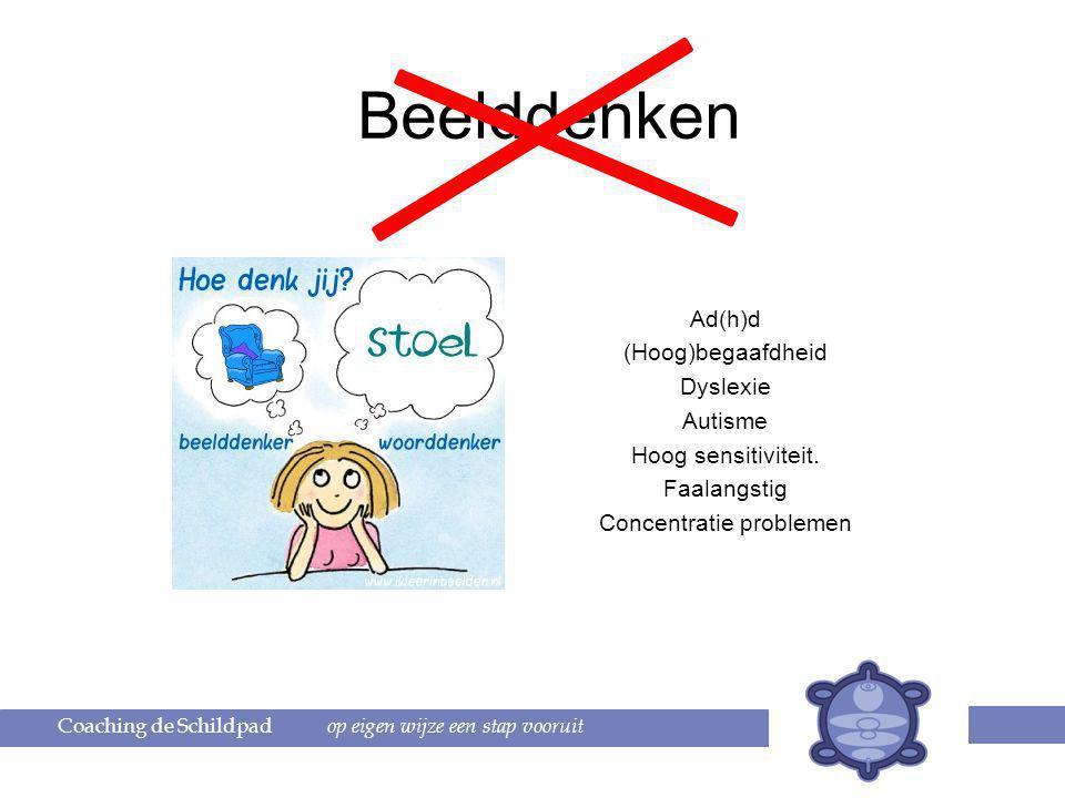 Beelddenken Ad(h)d (Hoog)begaafdheid Dyslexie Autisme Hoog sensitiviteit.