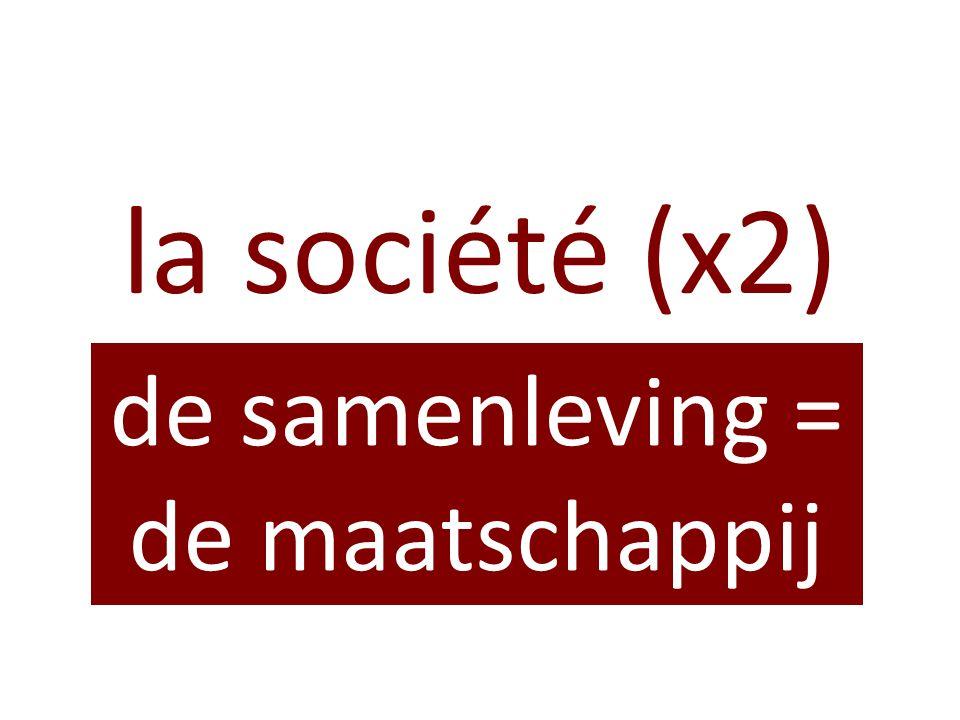 la société (x2) de samenleving = de maatschappij