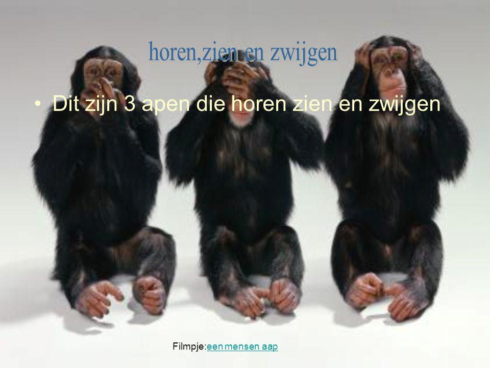 Dit zijn 3 apen die horen zien en zwijgen Filmpje:een mensen aapeen mensen aap