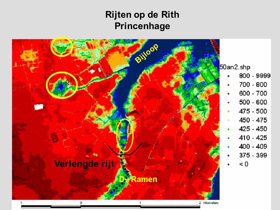 Rijten op de Rith Princenhage De Ramen Bijloop Verlengde rijt